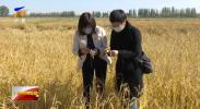 宁夏:粉煤灰变废为宝 助力盐碱地改良-20211012