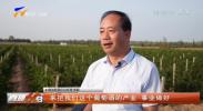 张毅:种下百年酒庄梦-20211012