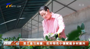 贺兰县习岗镇:花卉特色小镇赋能乡村振兴-20211011