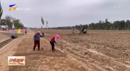 宁夏:高标准建设秋冬农田水利 高质量推进乡村振兴-20211012