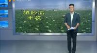 小微信解决瓜农大麻烦-2017年7月25日