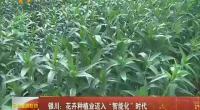 """银川:花卉种植业迈入""""智能化""""时代-2018年1月21日"""