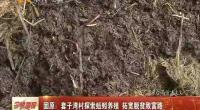 固原:套子湾村探索蚯蚓养殖 拓宽扶贫致富路-2018年3月21日