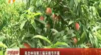 吴忠林场第三届采摘节开幕-2018年5月26日