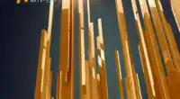 都市阳光-181106