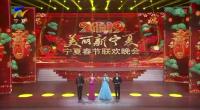 (2019美丽新宁夏)宁夏春节联欢晚会