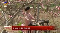 吴忠市利通区第五届桃花节开幕-190423