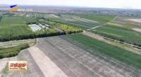 固原市原州区种植冷凉蔬菜21万亩-190423