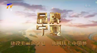 """寧夏""""波浪""""-191113"""
