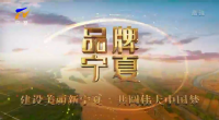 品牌寧夏-200101