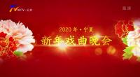 2020寧夏戲曲晚會