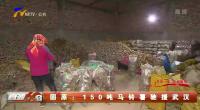 固原:150吨马铃薯驰援武汉-200211