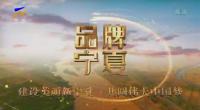 品牌宁夏-200513