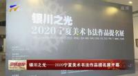 银川之光—2020宁夏美术书法作品提名展开幕-200604