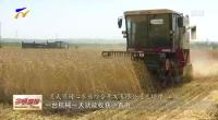 宁夏灌区小麦收割全面展开 各地多措并举促夏粮按时颗粒归仓-20200712