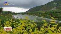 隆德:一城山水染绿 芳华清流富民-20200917