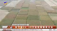 贺兰县24.36万亩秋粮喜获丰收-20201009