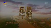 品牌宁夏-20201007