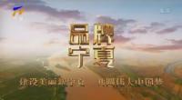 品牌宁夏|中国葡萄酒明星产区-20201020