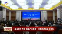 """""""聚合青年力量 赋能产业发展""""主题活动在银川举行-20201124"""
