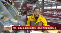 宁夏:快递业总体规模快速增长 成为经济发展新的增长点-20201124