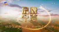 品牌寧夏-20201218