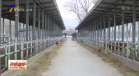 宁夏:加快农业农村现代化 推动农业大发展农村大变化-20210124