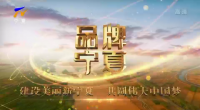 品牌寧(ning)夏-20210414