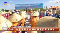 红寺堡区举办第四届黄花菜采摘节-20210726