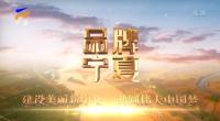 品牌宁夏-20210913