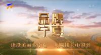 品牌宁夏-20210903