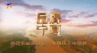 品牌宁夏 宁夏枸杞正当红 小杞的vlog-20210920