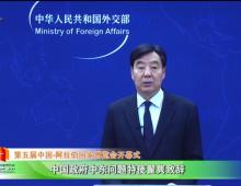 中国政府中东问题特使翟隽视频致辞