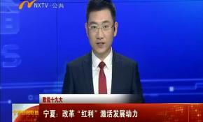"""数说十九大 宁夏:改革""""红利""""激活发展动力-2017年10月21日"""