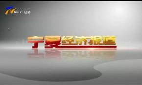 宁夏经济报道-200706