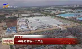 逐梦黄河丨一杯牛奶带动一个产业-20200807