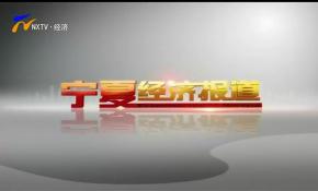 宁夏经济报道-20201202