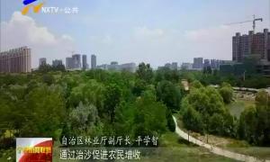 (喜迎自治区60大庆)宁夏:荒漠化